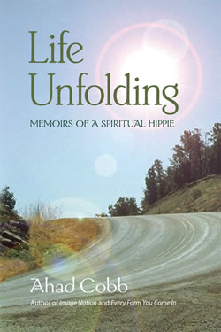 Memoirs of a Spritual Hippie book cover